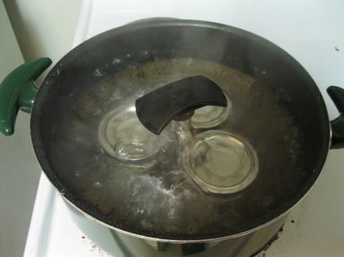 Boiling water bath using large pot and steamer basket. I just took the lid off to take a picture.