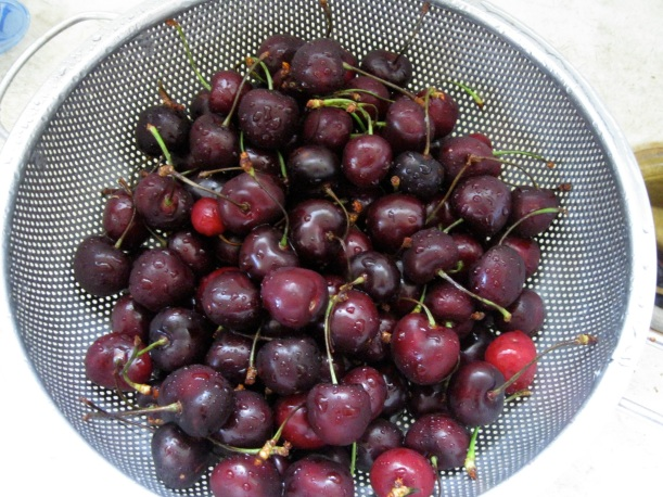 Beautiful cherries from the farmer's market.