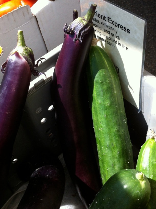 "Eggplants at the farmer's market - these are the variety ""Orient Express"""