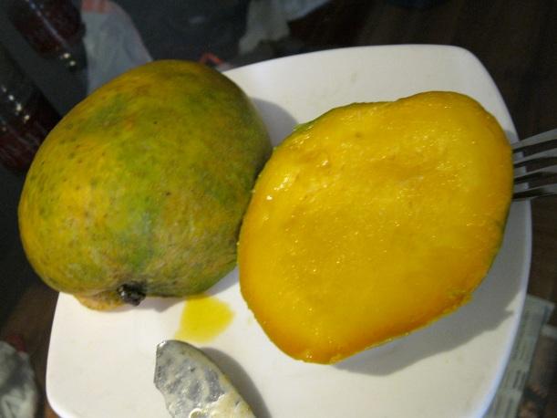 Malgova mango, large, green, and sweet!