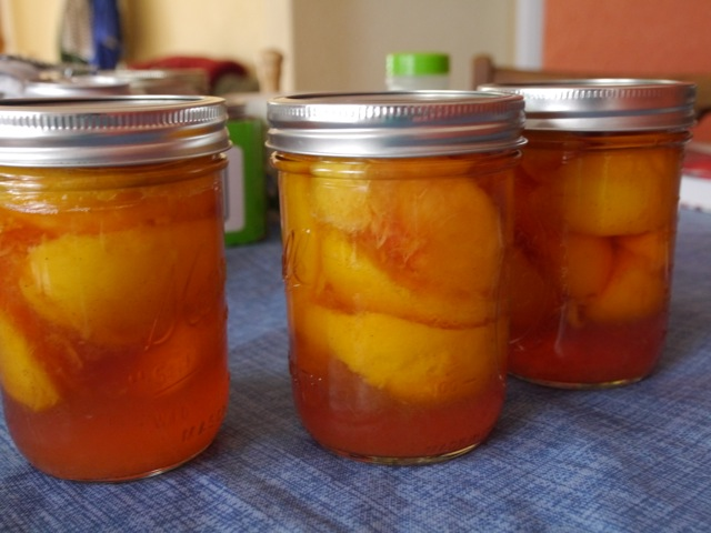 Pickled peaches!