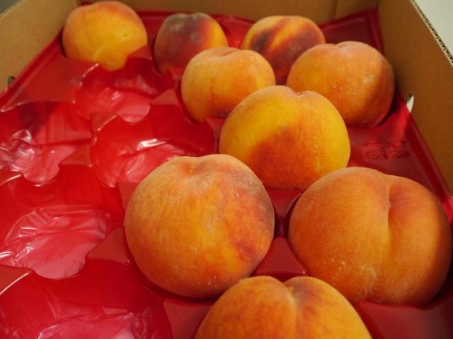 Suncrest Peaches