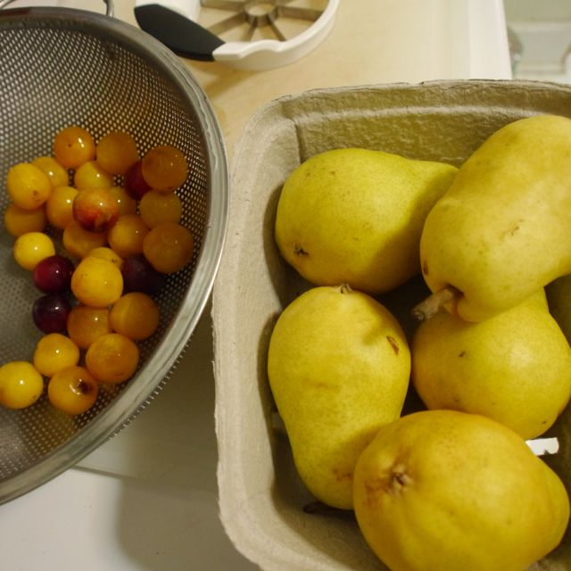 Bartlett pears and foraged plums
