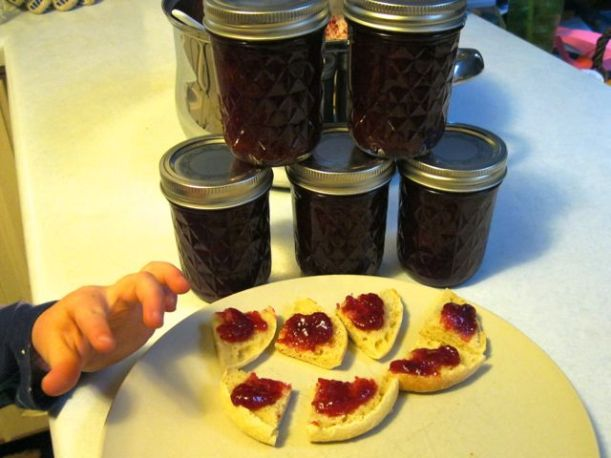 We sampled the jam on the only two English muffins in the house. The 4-year-old girl they were babysitting was helping us taste test the jam... and she came back again and again for more toast with jam. It's a hit!