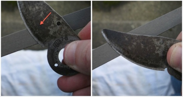 File the blade first, particularly if it's been awhile or you have large chips in the blade. File in the direction you cut (see the red arrow), life the blade, and file in the direction again. Don't rub back and forth.