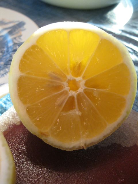 The lighting was really cool back in March, and I just liked the way this lemon was backlit.