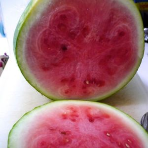 Not the best watermelon ever, but I tell you what, that is totally ok.